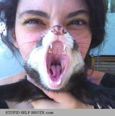 Ferret face, selfie photobomb