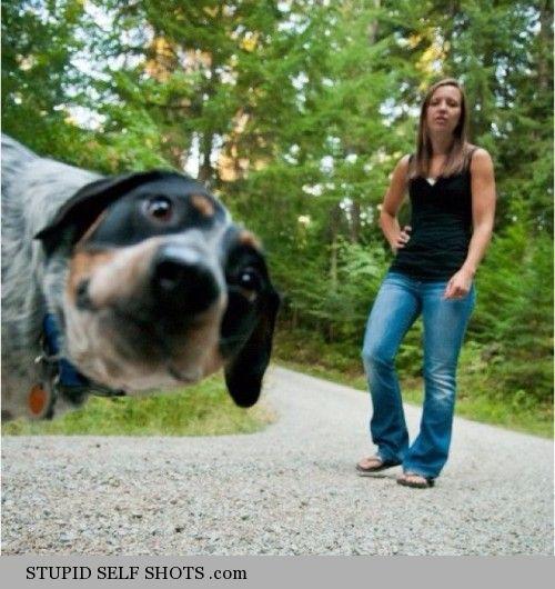 This is my human, dog self shot