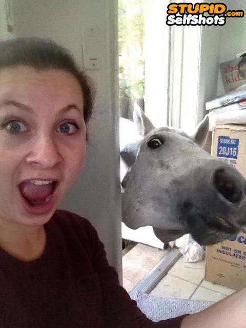 Photobombed selfie, by a horse